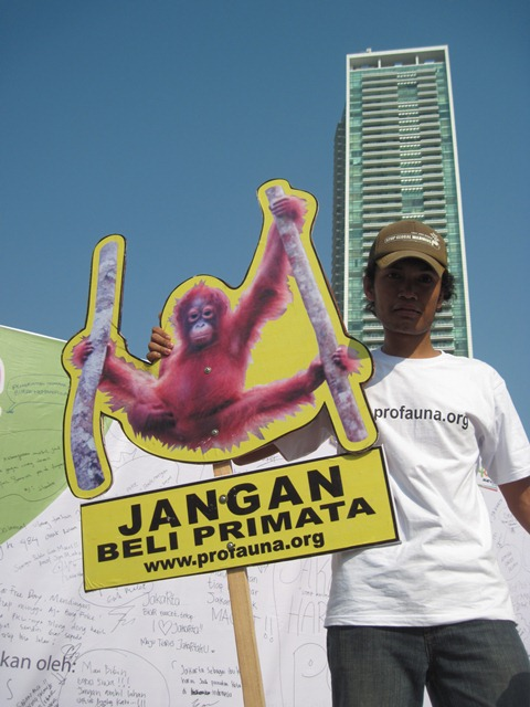 Primate campaign, Profauna
